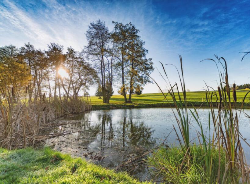 See Alfrédov Golf & Wellness Resort