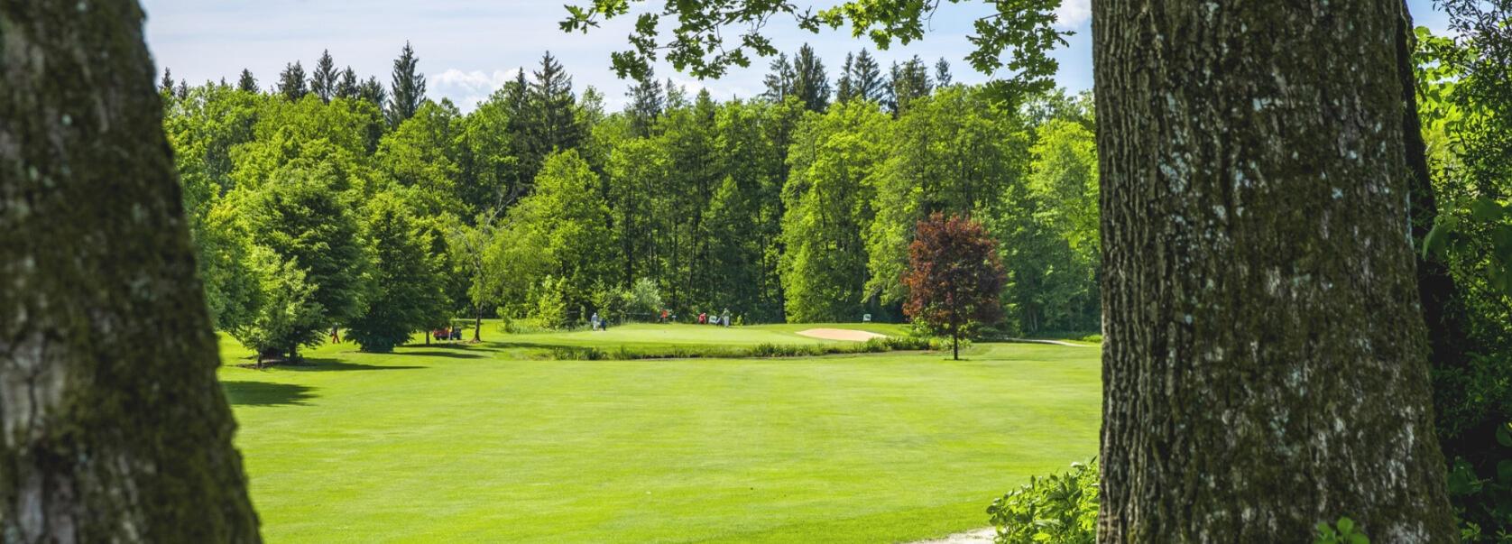 Golffläche Golfclub Beuerberg